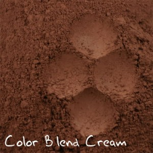 Color Blend Cream