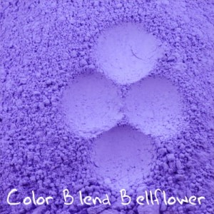 Color Blend Bellflower