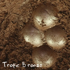 PURE PIGMENT Tropic Bronze